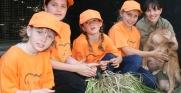 Junior Zookeepers with Zoologist Bronte and Cleo the Dingo